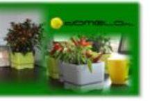 Sklep Internetowy Domelo / Wszystko dla domu i ogrodu