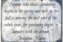Winter Garden / Garden in winter inspiration