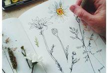 AS Art Sketchbook Inspiration