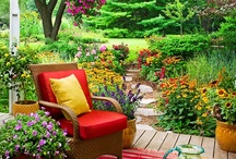 GARDENING & OUTDOORS / by Anasthassia Art & Design