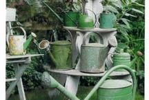 Watering Cans!  Everywhere! / Love watering cans - slowly building up my own collection.  In the meantime, here are some of my favorites and a bunch I would LOVE to find some day. / by Carol Ann