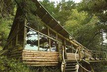 T Nature Harmonic Architecture