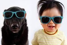 Irresistible Babies and Pets / 22 Photos That Prove Why Babies Need Pets. Number 17 Especially  A child's development can often be accelerated by daily interactions with the family pet. Their young minds grow a great deal through their social and emotional bonds. Instead of providing scientific facts to backup this theory, here are 22 photos that without a doubt prove that it's true.