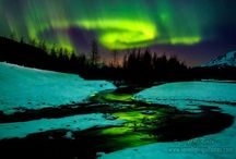 Aurora Borealis / by Kim Peterson