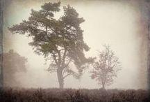 #Landschappen / Sinds kort groeit bij de interesse voor het maken van #landschappen #landschapsfotografie
