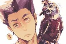 ( Haikyuu ) little owl