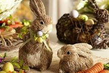 Easter Crafts & Decor / by Heidi Jensen