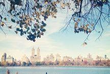 Dream holiday