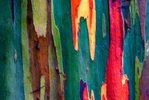 COULEUR / Un monde de couleur