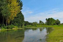 Bords du Loir en bas du Jardin / C'est le Loir qui coule en bas du jardin et de l'atelier-laboratoire des Douces Angevines. Mais la Loire n'est pas loin... (Ph. DA)