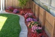My garden / Saját kert iránti vágyainkat kiélhetjük akár egyetlen virágcserében is. :)