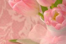 Flowers / Nem csak a szemedet, de a lelkedet is gyönyörködteti.
