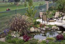 Jardin - Extérieur - Piscine