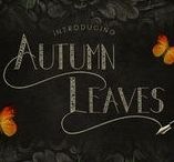 Autumn Leaves Font / Hello I'm really excited to introduce Autumn Leaves is a vintage typeface font inspired from classic and old style. Have a ornament with classic type, suitable to create any branding, product packaging, invitation, qoutes, t-shirt, label poster etc.   https://creativemarket.com/madeDeduk/1638764-Autumn-Leaves