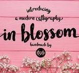 In blossom /   In blossom - Script  Like  Save  In blossom - Script - 1  In blossom - Script - 2  In blossom - Script - 3  In blossom - Script - 4  In blossom - Script - 5  In blossom - Script - 6  In blossom - Script - 7  In blossom - Script - 8  In blossom - Script - 9  In blossom - Script - 10  In blossom - Script - 11 Hello I'm really excited to introduce, In blossom a bold handwriting font with cool character! In blossom come more than 350 glyphs and this perfect for all your design or event.