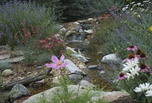 Pondless Waterfalls / A pondless waterfall is an easy low maintenance way to add a water feature to your landscape.  You get the sound and beauty of falling water with none of the work involved in a pond.