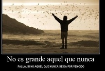 Quotes-Frases