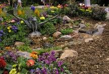 Garden and Home Shows / Denver, Colorado Garden and Home Shows