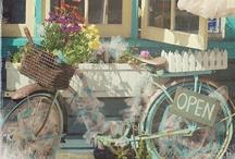 Loving Bicycles
