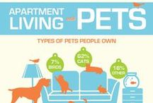 Pet Owner Resources and Tips