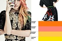 Trends & Colors