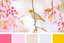 Color palettes / - color combinations I find inspiring -
