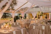 Best Thing I Never Had / Inspiration for my wedding day venue. I want an intimate, romantic space, preferably under a huge lit tent...