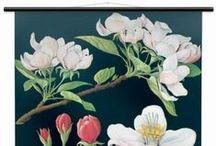 Wallography Botanical Wall Charts