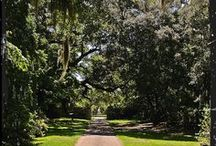 Weddings at Brookgreen Gardens / by Brookgreen Gardens