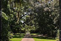 Weddings at Brookgreen Gardens / by Brookgreen Gardens