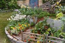 tuinprojecten / tuinen