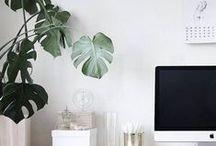 ● Office ● / Office Decor...