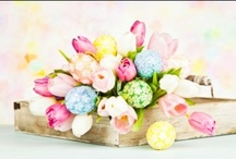 Easter Flower Arrangement Ideas / by WholeBlossoms Wholesale Wedding Flowers