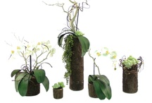 Orchid Garden Collection / For more information on any of our pre-mades, please call 404-351-0000 or send us an email at order@heeney.com. / by Heeney Company