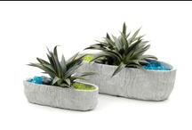 Desert Plant Collection / For more information on any of our pre-mades, please call 404-351-0000 or send us an email at order@heeney.com. / by Heeney Company