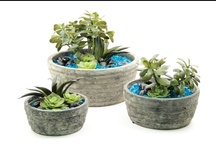 Concrete Succulent Collection / For more information on any of our pre-mades, please call 404-351-0000 or send us an email at order@heeney.com. / by Heeney Company