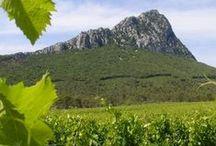 Les Vignerons / Domaines et vignerons qui produisent les vins vendus dans notre boutique espace vin (http://www.espace-vin.com/domaines.html)