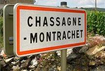 Bourgogne / Les vins de Bourgogne connurent un essor au Moyen-Âge, où les meilleurs terroirs furent décelés par les moines cisterciens. Le Clos de Vougeot abrite encore le cellier cistercien. Les moines inventèrent la notion de climat et orientèrent la viticulture vers plus de qualité.