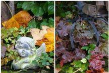 Herbstdekoration / Waldrebenkranz am Scheunentor