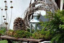 Außendeko im Winter / Außendekoration im Winter, DIY Weihnachtsstern, Deko mit Zinkgefässen, Shabby Gartendekoration