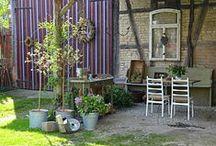 Der Duft von Flieder / Landhausgarten, Gartendekoration, Dekoideen mit Lavendel, Lavendel
