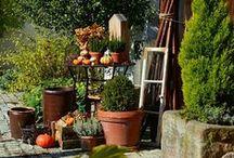 Herbstdeko mit Kürbis und Hagebutten / Gartendekoration mit Kürbissen, Herbstdekoration, Gartendekoration im Herbst, Kürbisse und Hagebutten, Herbstkranz, Kranz aus Hagebutten