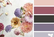 Colors & Co. / I colori della natura