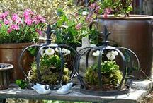 Rosa Frühling im Garten / Gartendekoration im Frühling, Shabby Gartendeko