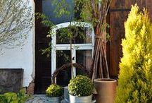 es grünt so grün im Innenhof / Dekorationsideen für einen kleinen Innenhof