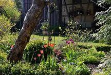 Morgenstimmung im Garten / Gartendekoration im Shabby Look