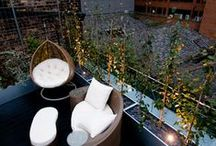 LONDON BRIDGE - Urban Roof Gardens / LONDON BRIDGE: A dramatic line of silver birch trees afford both containment and screening to this otherwise very exposed roof terrace. Designed for entertainment, a built-in bar provides a focal point, and funky yet inexpensive furniture offers seating. A green wall provides a stunning backdrop to this party space. At night, concealed spotlights illuminate the trees and green wall, and the bar also reveals a transparent and under-lit ice bucket - ideal for bottles of wine or Vodka!