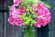 Blumengruß & Dankeschön / Rosenstrauß