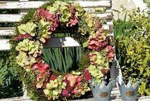Hortensienkranz / Herbstdekoration mit Hortensien, Hortensienkranz, Dekoration im Herbst