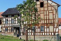 Hausbaum / Rosskastanie, Hausbaum, Fachwerkhaus